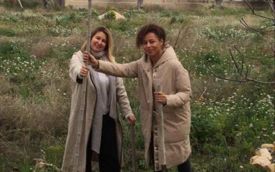 Una 'Morera' de Laura Cárdenas y Patricia Torregrosa