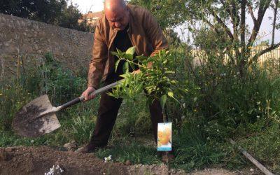Un 'Mandarino' de Antonio Rodes, director general de SPTCV